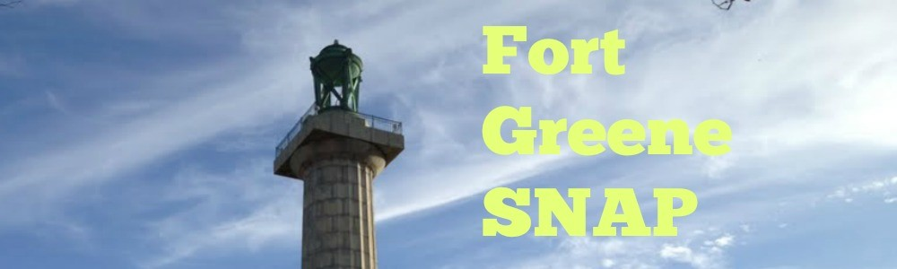 fort greene snap monument